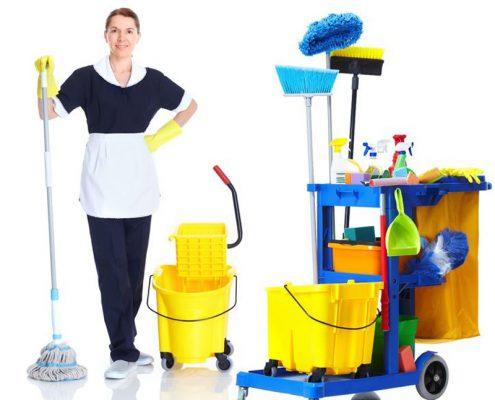 ÇEKMEKÖY KURUMSAL TOPTAN TEMİZLİK MALZEMELERİ TEDARİKÇİSİ, çekmeköy temizlik malzemeleri tedarikçisi, temizlik ürünleri toptan çekmeköy